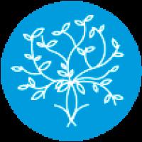 Instituto Mindfulness Empresa